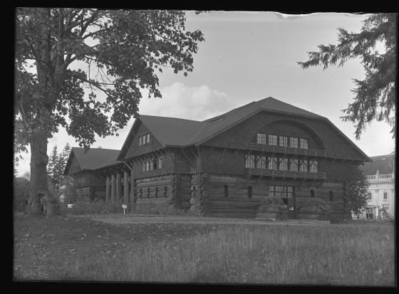 forestry building 1910 field museum