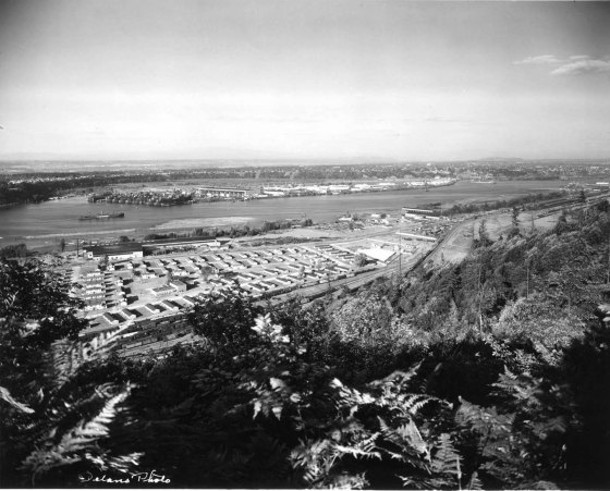 A2001-025.217 Northern section Guilds Lake housing project 1946