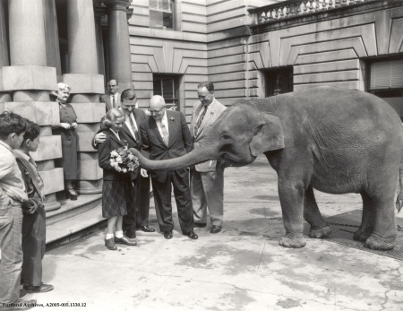 Peterson & Buckley with Rosy the Elephant at City Hall, 1935 : A2005-005.1330.12