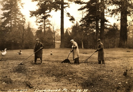 Laurelhurst Park Cleanup, Nov. 6, 1935 : A2000-025.1121