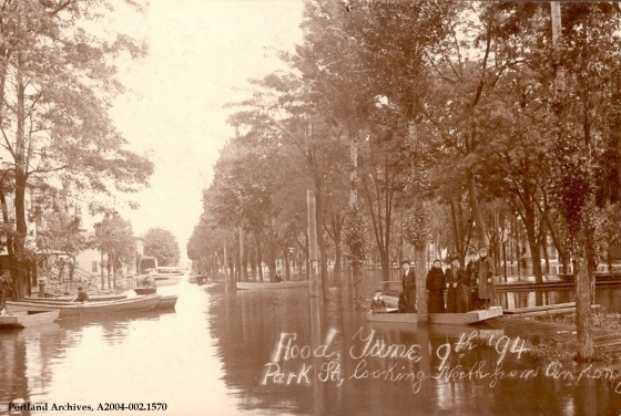 Flood on the North Park blocks, 1894: A2004-002.1570