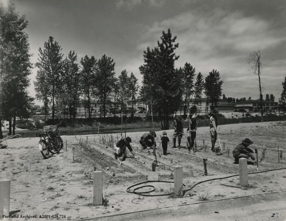 Vanport residents working in garden, circa 1944: A2001-025.724