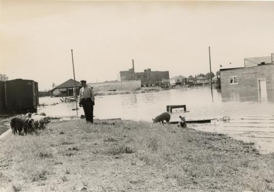 Vaport, 1948
